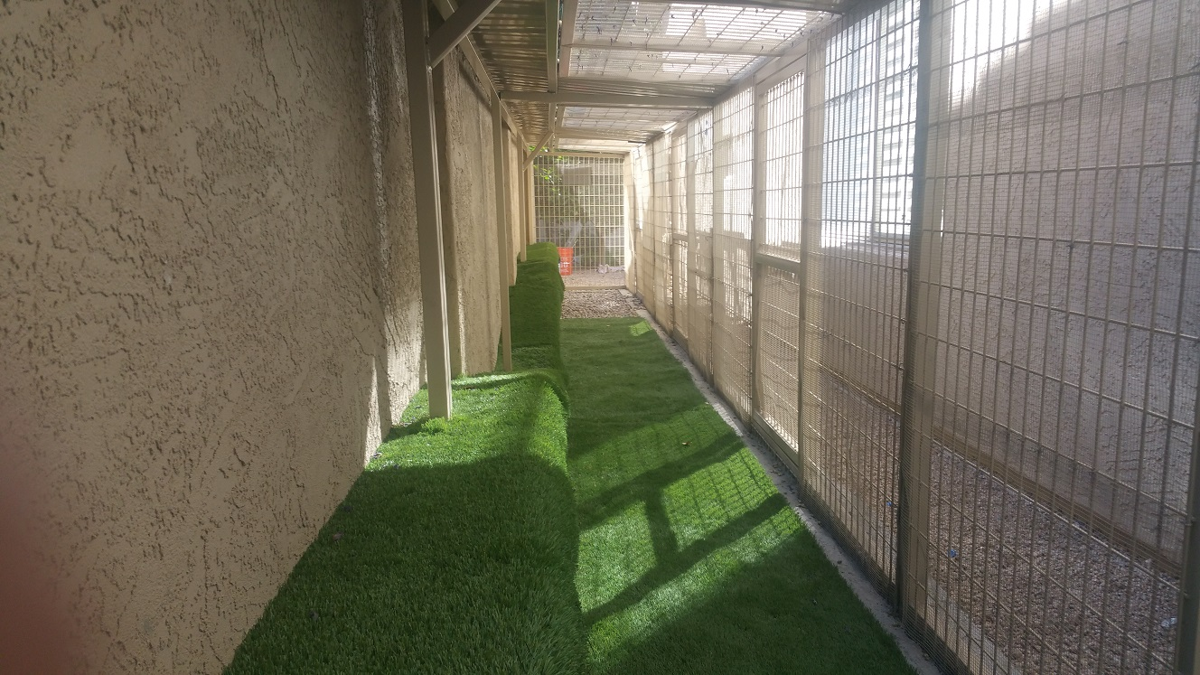 AZ Dog Run Installation Company