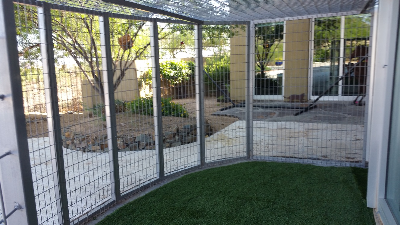 Kennels For Outside Dogs