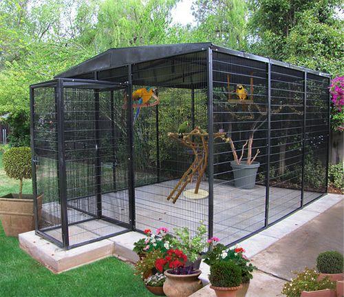 Aviaries that Keep Birds Safe.