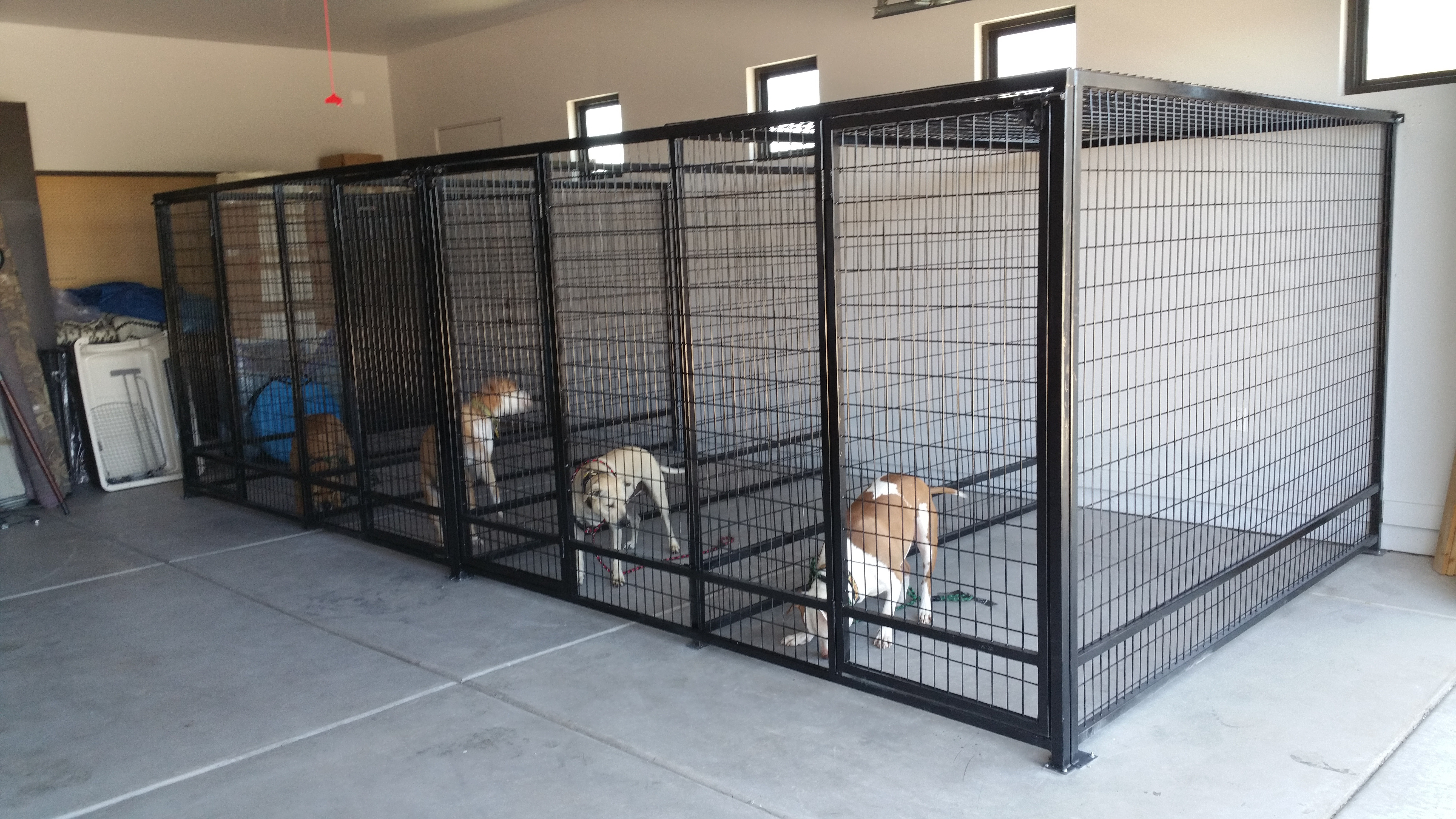 Kennels Keep Coyotes OUT!